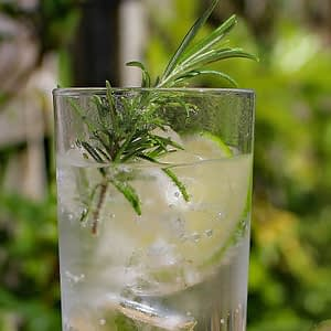 Fever Tree and Alcohol Free Gin