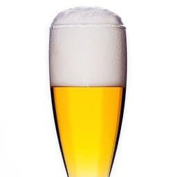 100 alcohol free beer