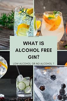 what is alcohol free gin ?