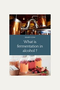what is fermentation in alcohol