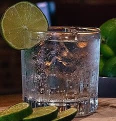 alcohol free gin and fever tonic