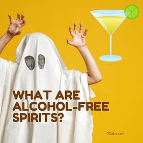 what are alcohol-free spirits?