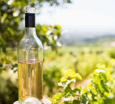 Calories and Alcohol Free Wine