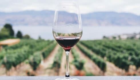 How is Alcohol Free Wine Made